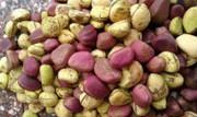 орехи кола  какао бобы