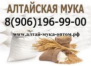 Алтайская мука оптом