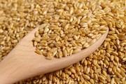 Пшеница 3-й класс